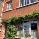Proposition 14: Promouvoir les plantes grimpantes en façade avec une prime communale